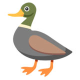 Duck on Google Android 7.0