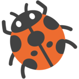Lady Beetle on Google Android 7.0