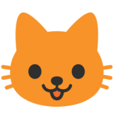Cat Face on Google Android 7.1