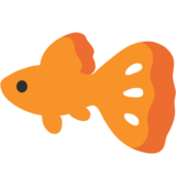 Tropical Fish on Google Android 7.1