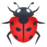 Lady Beetle on JoyPixels 5.5