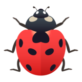 Lady Beetle on JoyPixels 6.0