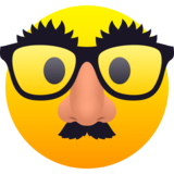 Disguised Face on JoyPixels 6.6