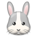 Rabbit Face on LG G3