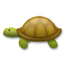 Turtle on LG G3