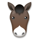 Horse Face on LG G4