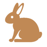 Rabbit on Microsoft Windows 8.1
