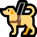 Guide Dog on Microsoft Windows 10 May 2019 Update