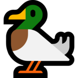 Duck on Microsoft Windows 10 Anniversary Update