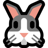 Rabbit Face on Microsoft Windows 10 Anniversary Update