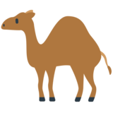 Camel on Mozilla Firefox OS 2.5