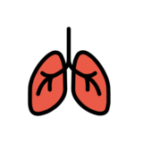 Lungs on OpenMoji 12.2