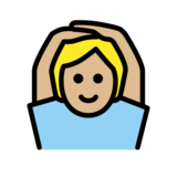Person Gesturing OK: Medium-Light Skin Tone on OpenMoji 12.2