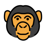 Monkey Face on OpenMoji 12.3