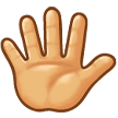 Hand with Fingers Splayed on Samsung Experience 8.5