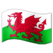 Flag: Wales on Samsung Experience 9.0