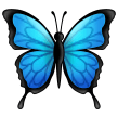Butterfly on Samsung One UI 2.5