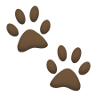 Paw Prints on Samsung TouchWiz Nature UX 2