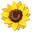 Sunflower on Samsung TouchWiz Nature UX 2