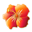 Hibiscus on Samsung Touchwiz 6.0
