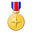 Military Medal on Samsung Touchwiz 6.0