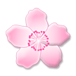 Cherry Blossom on Samsung TouchWiz 7.1