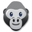 Gorilla on Samsung TouchWiz 7.1