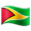 Flag: Guyana on Samsung Experience 8.1