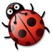 Lady Beetle on Samsung Experience 8.1
