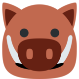 Boar on Twitter Twemoji 11.0