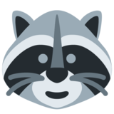 Raccoon on Twitter Twemoji 11.0