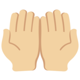Palms Up Together: Medium-Light Skin Tone on Twitter Twemoji 11.3