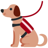 Service Dog on Twitter Twemoji 12.1.4