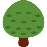 Deciduous Tree on Twitter Twemoji 2.1