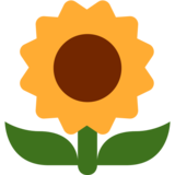 Sunflower on Twitter Twemoji 2.2