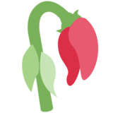 Wilted Flower on Twitter Twemoji 2.2.1