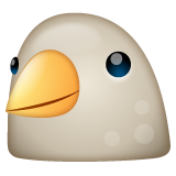 Bird on WhatsApp 2.19.244