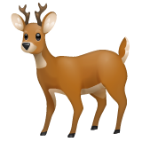 Deer on WhatsApp 2.19.244