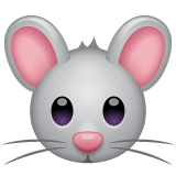Mouse Face on WhatsApp 2.19.244