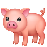 Pig on WhatsApp 2.19.244