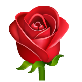 Rose on WhatsApp 2.19.244