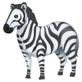 Zebra on WhatsApp 2.19.244