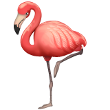 Flamingo on WhatsApp 2.19.352