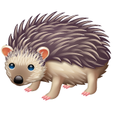 Hedgehog on WhatsApp 2.19.352