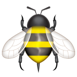 Honeybee on WhatsApp 2.19.352