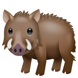 Boar on WhatsApp 2.20.198.15