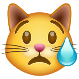 Crying Cat on WhatsApp 2.20.198.15