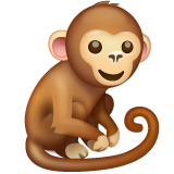 Monkey on WhatsApp 2.20.198.15