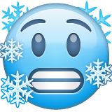 Cold Face on WhatsApp 2.20.206.24
