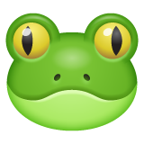 Frog on WhatsApp 2.20.206.24